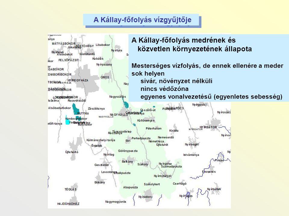 A Kállay-főfolyás medrének és közvetlen környezetének állapota Mesterséges vízfolyás, de ennek ellenére a meder sok helyen sivár, növényzet nélküli ni