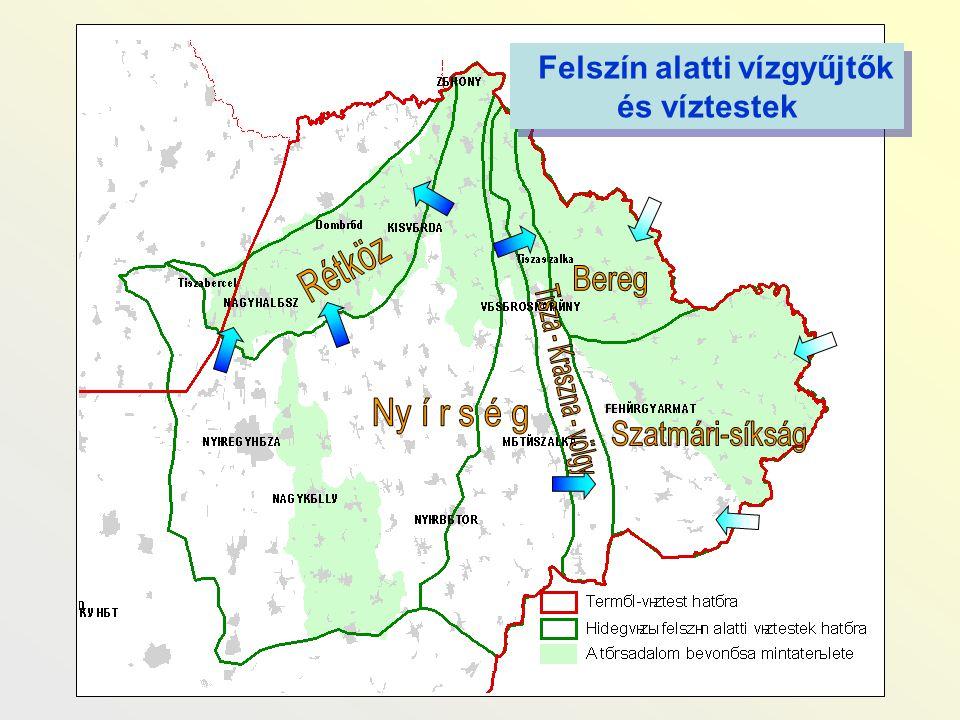 - Kiszáradt holtágak (valójában a Tisza problémája) - Túlzott mértékű belvízelvezetés - Csatornák és közvetlen környezetük állapota - Szennyezések a szántóföldekről, településekről, állattartásból - Nem megfelelő minőségű ivóviz A Bereg