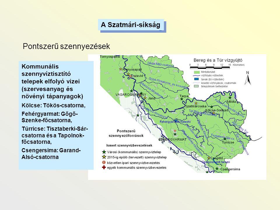 A Szatmári-síkság Pontszerű szennyezések Kommunális szennyvíztisztító telepek elfolyó vizei (szervesanyag és növényi tápanyagok) Kölcse: Tökös-csatorn