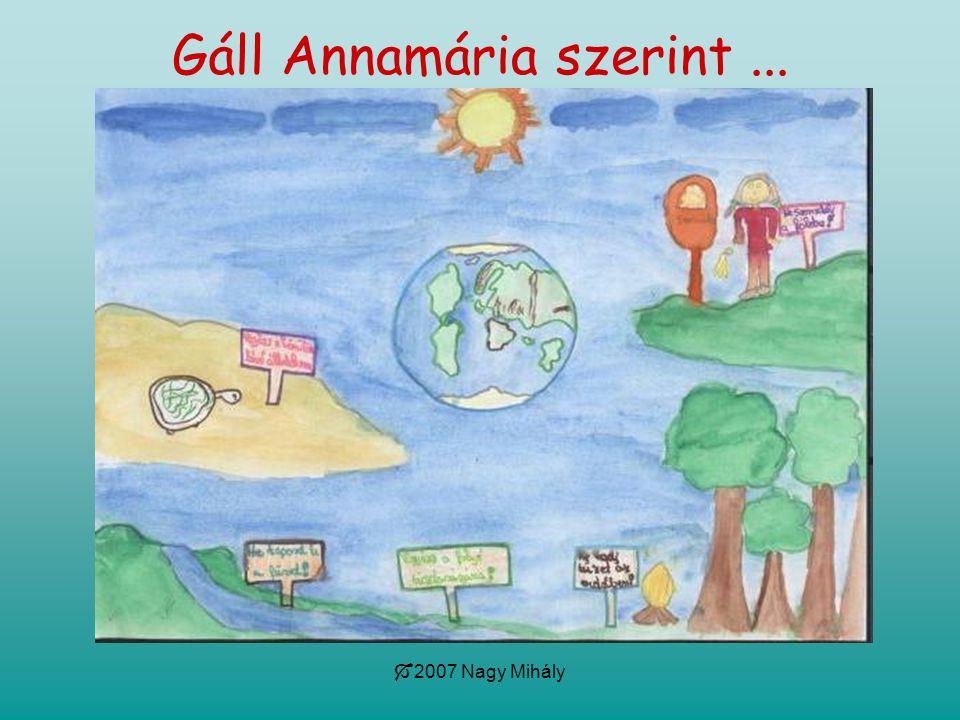  2007 Nagy Mihály Gáll Annamária szerint...