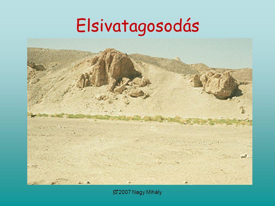  2007 Nagy Mihály Elsivatagosodás