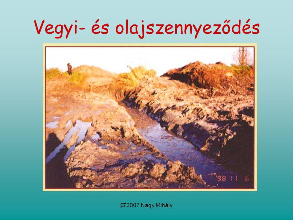 2007 Nagy Mihály Vegyi- és olajszennyeződés