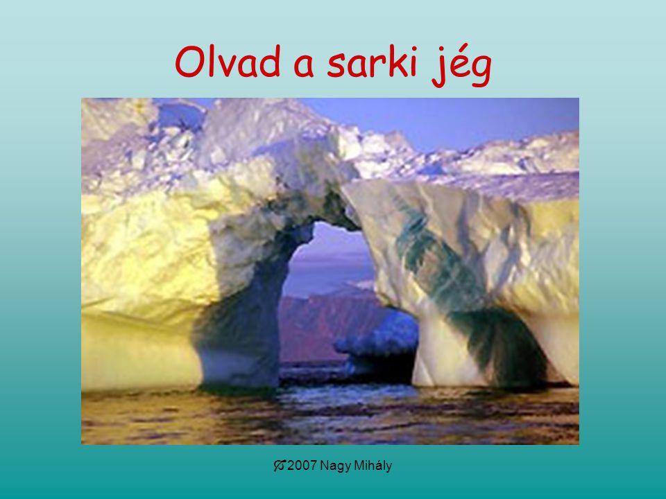  2007 Nagy Mihály Olvad a sarki jég
