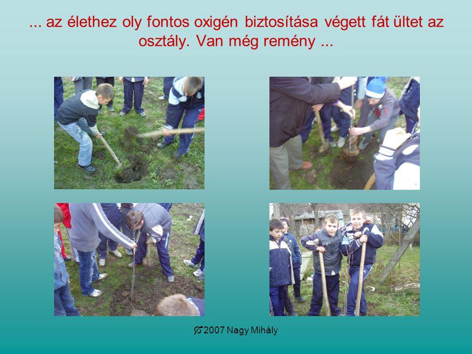  2007 Nagy Mihály... az élethez oly fontos oxigén biztosítása végett fát ültet az osztály. Van még remény...