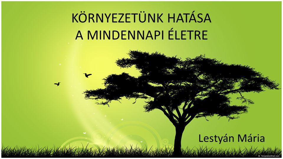 KÖRNYEZETÜNK HATÁSA A MINDENNAPI ÉLETRE Lestyán Mária