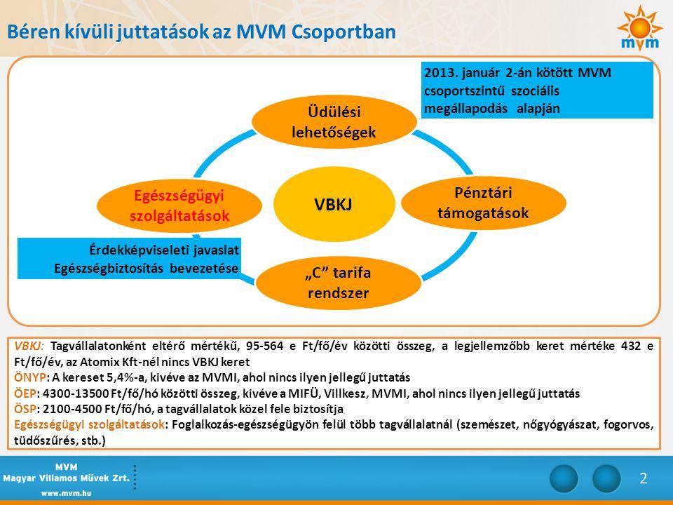 """Béren kívüli juttatások az MVM Csoportban Üdülési lehetőségek VBKJ """"C tarifa rendszer Pénztári támogatások Egészségügyi szolgáltatások 2013."""