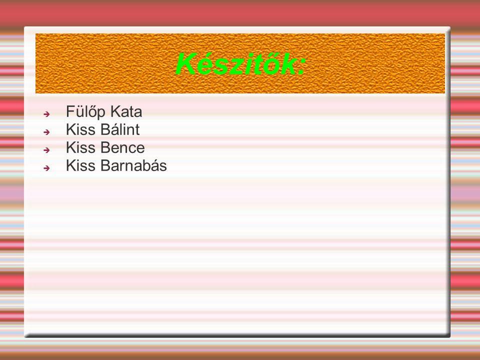 Készitők:  Fülőp Kata  Kiss Bálint  Kiss Bence  Kiss Barnabás
