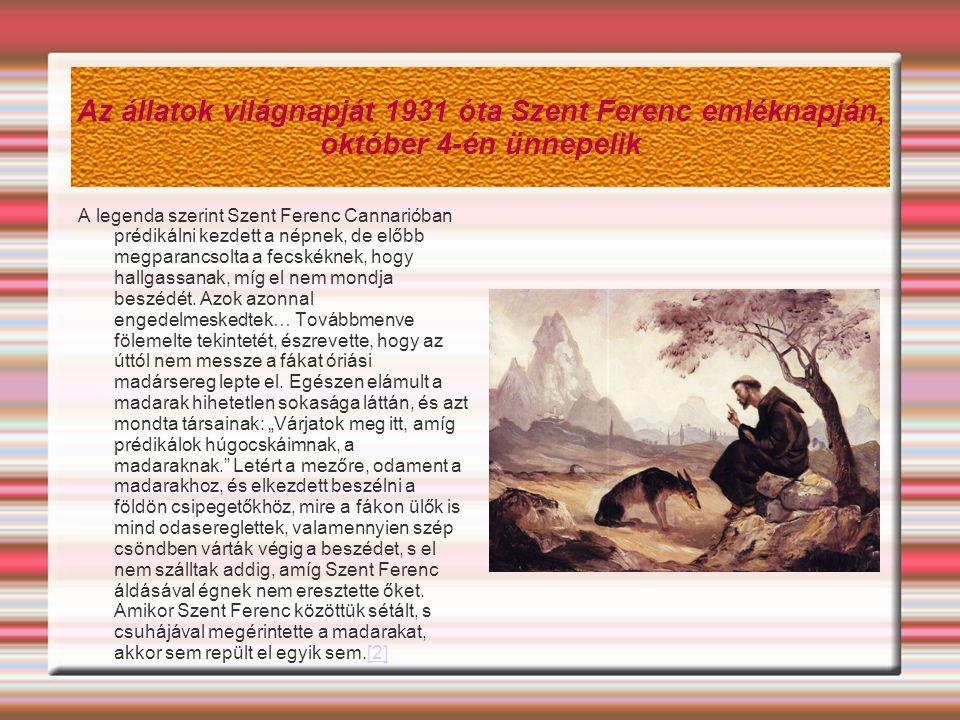 Az állatok világnapját 1931 óta Szent Ferenc emléknapján, október 4-én ünnepelik A legenda szerint Szent Ferenc Cannarióban prédikálni kezdett a népnek, de előbb megparancsolta a fecskéknek, hogy hallgassanak, míg el nem mondja beszédét.