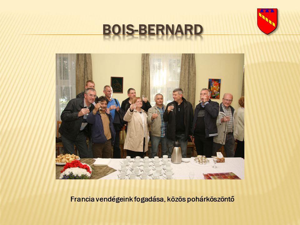 Francia vendégeink fogadása, közös pohárköszöntő