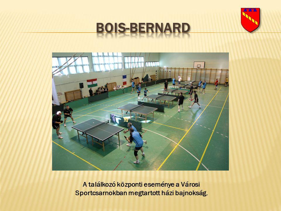 A találkozó központi eseménye a Városi Sportcsarnokban megtartott házi bajnokság.