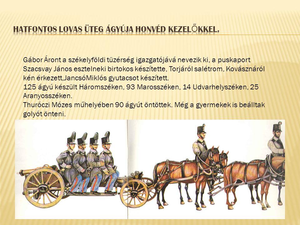 Gábor Áront a székelyföldi tüzérség igazgatójává nevezik ki, a puskaport Szacsvay János esztelneki birtokos készítette, Torjáról salétrom, Kovásznáról