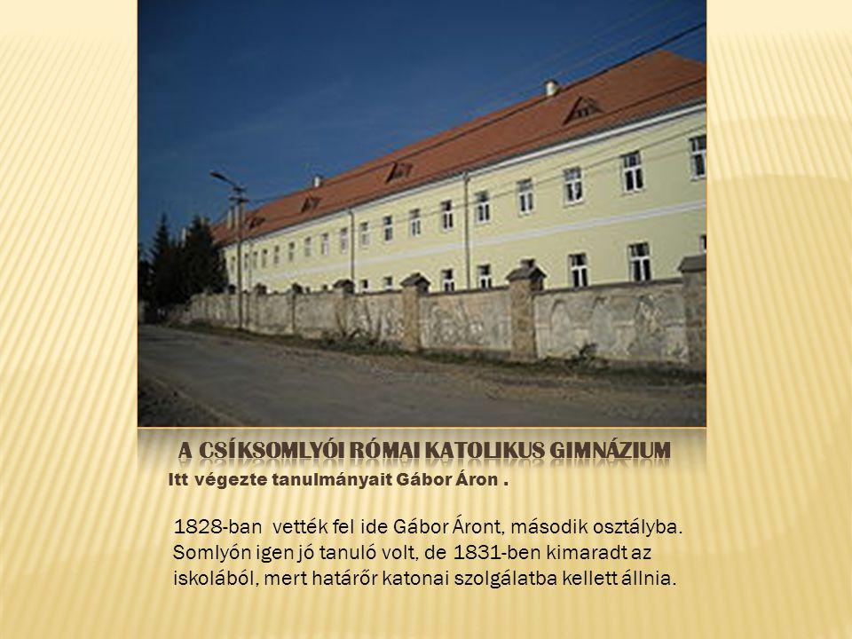 Itt végezte tanulmányait Gábor Áron. 1828-ban vették fel ide Gábor Áront, második osztályba. Somlyón igen jó tanuló volt, de 1831-ben kimaradt az isko
