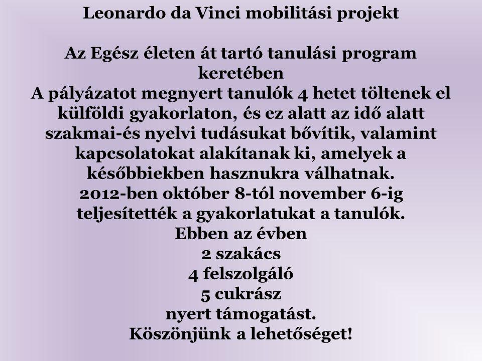 Leonardo da Vinci mobilitási projekt Az Egész életen át tartó tanulási program keretében A pályázatot megnyert tanulók 4 hetet töltenek el külföldi gy