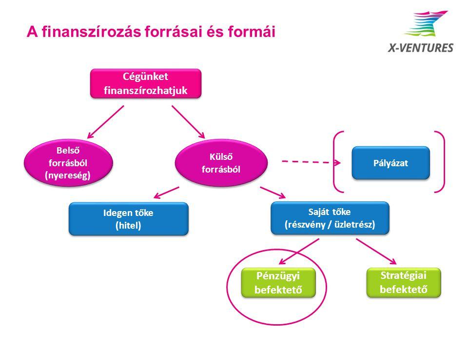 A finanszírozás forrásai és formái Cégünket finanszírozhatjuk Belső forrásból (nyereség) Külső forrásból Stratégiai befektető Pénzügyi befektető Idege