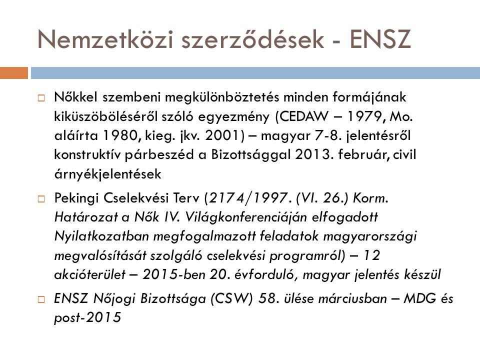 További hazai jogi alapok  1004/2010.(I. 21.) Korm.