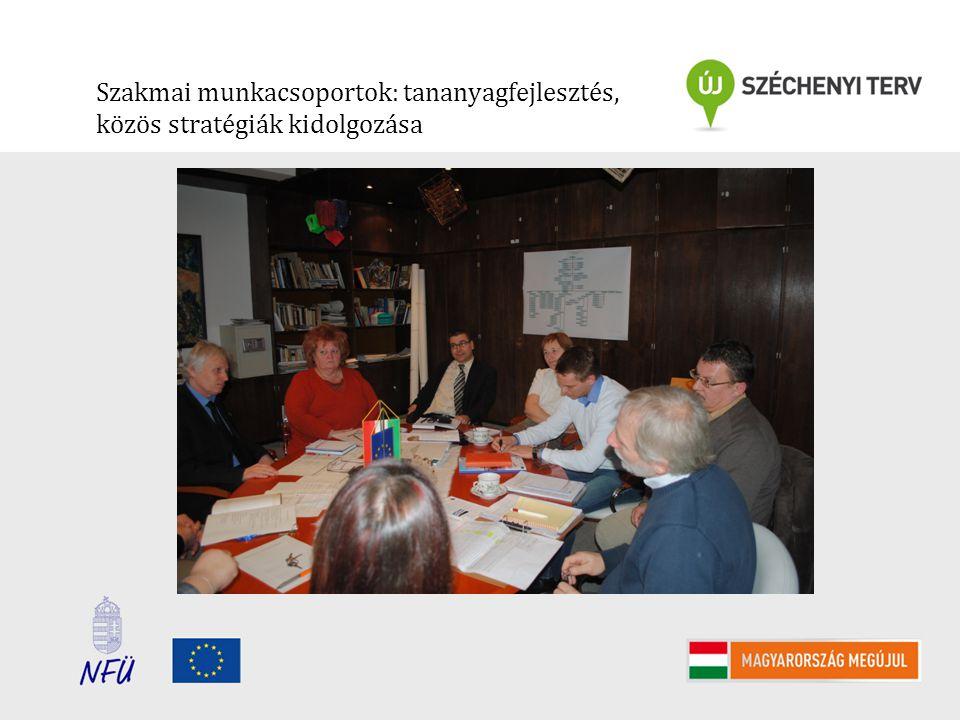 Szakmai munkacsoportok: tananyagfejlesztés, közös stratégiák kidolgozása