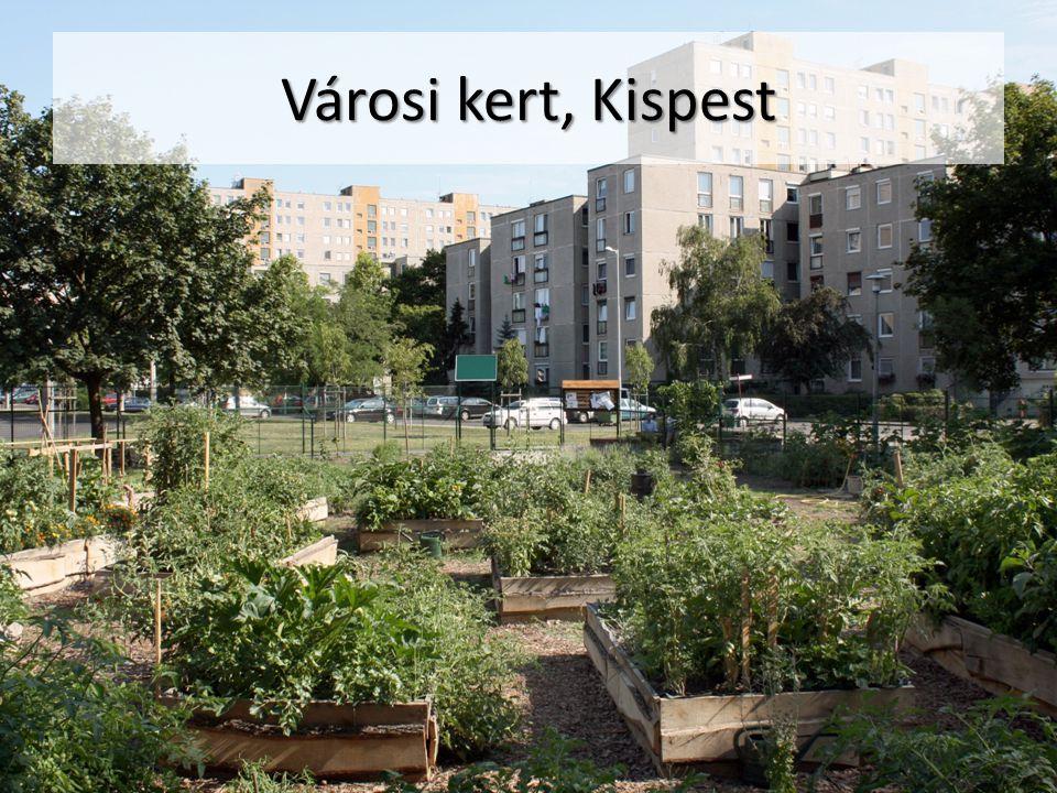 Városi kert, Kispest
