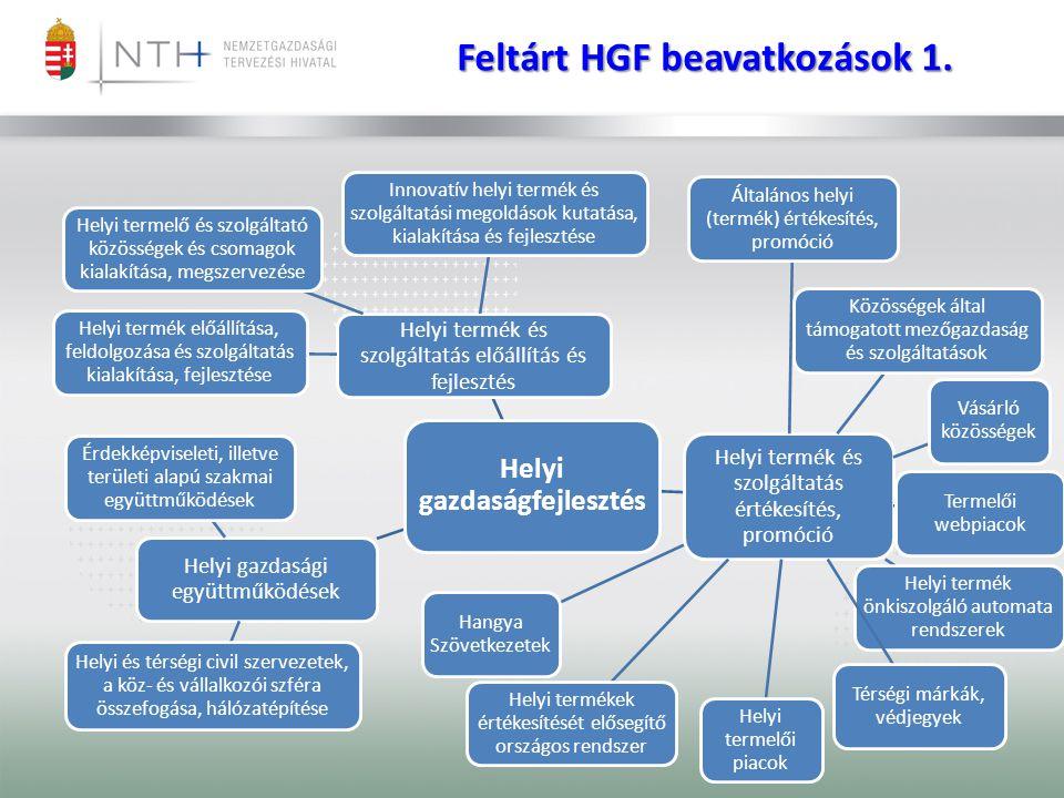 Feltárt HGF beavatkozások 1. Helyi gazdaságfejlesztés Helyi termék és szolgáltatás előállítás és fejlesztés Helyi termék előállítása, feldolgozása és