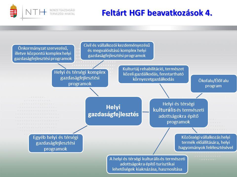 Feltárt HGF beavatkozások 4. Helyi gazdaságfejlesztés Helyi és térségi komplex gazdaságfejlesztési programok Önkormányzat szervezésű, illetve központú