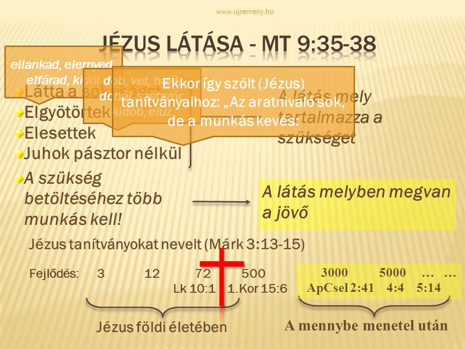 """Mt. 9,38: """"…kérjétek tehát az aratás Urát, hogy küldjön munkásokat az aratásába. www.ujremeny.hu"""