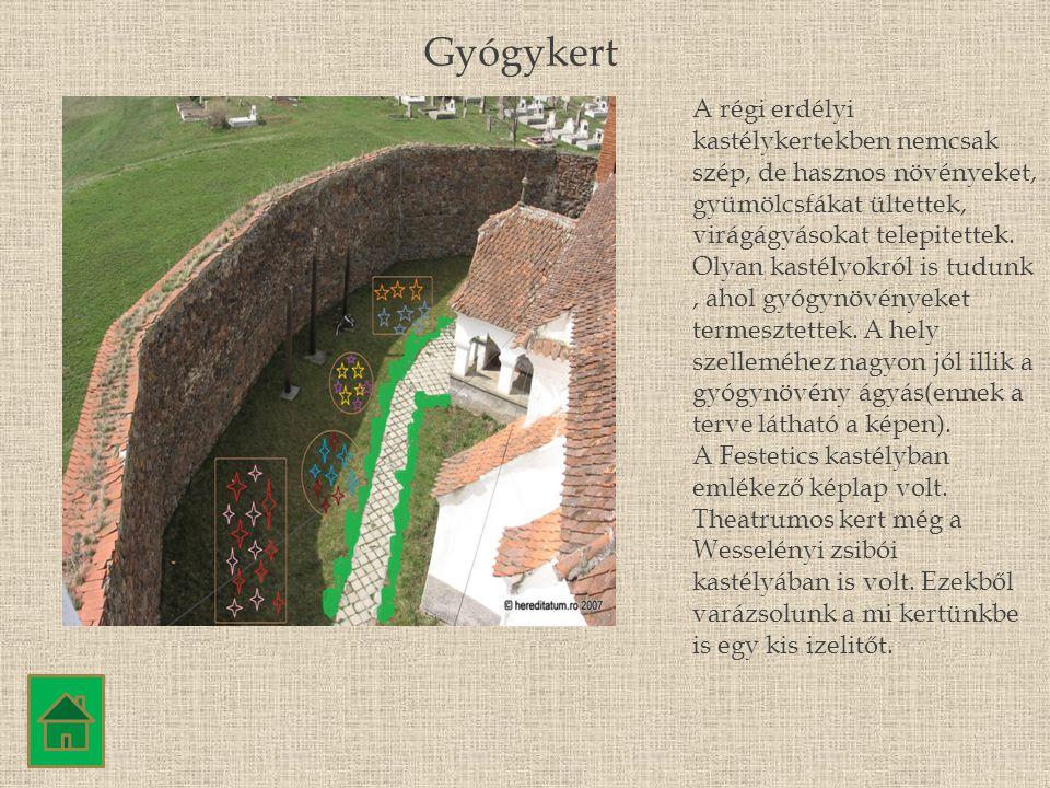 A régi erdélyi kastélykertekben nemcsak szép, de hasznos növényeket, gyümölcsfákat ültettek, virágágyásokat telepitettek. Olyan kastélyokról is tudunk