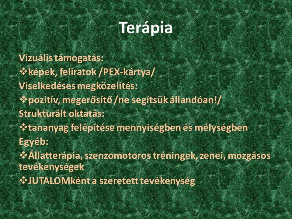 Terápia Vizuális támogatás:  képek, feliratok /PEX-kártya/ Viselkedéses megközelítés:  pozitív, megerősítő /ne segítsük állandóan!/ Strukturált okta