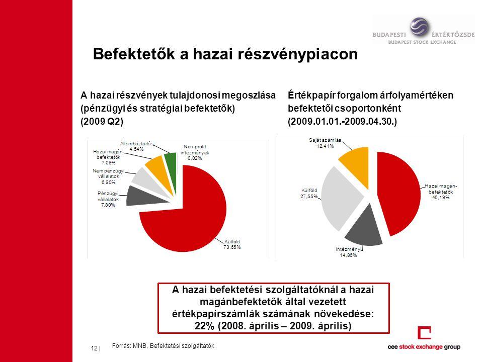 Befektetők a hazai részvénypiacon Forrás: MNB, Befektetési szolgáltatók 12 | A hazai részvények tulajdonosi megoszlása (pénzügyi és stratégiai befekte
