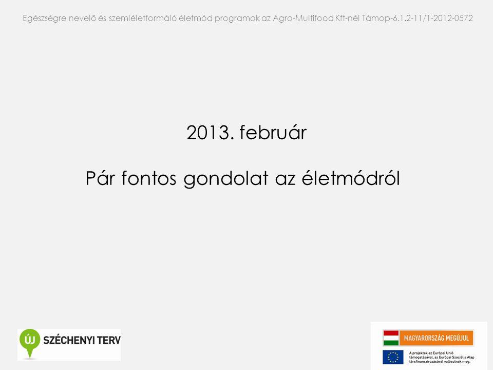 2013. február Pár fontos gondolat az életmódról Egészségre nevelő és szemléletformáló életmód programok az Agro-Multifood Kft-nél Támop-6.1.2-11/1-201