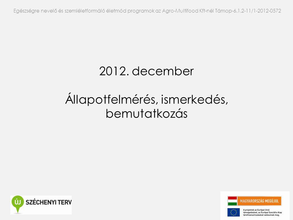 2012. december Állapotfelmérés, ismerkedés, bemutatkozás Egészségre nevelő és szemléletformáló életmód programok az Agro-Multifood Kft-nél Támop-6.1.2