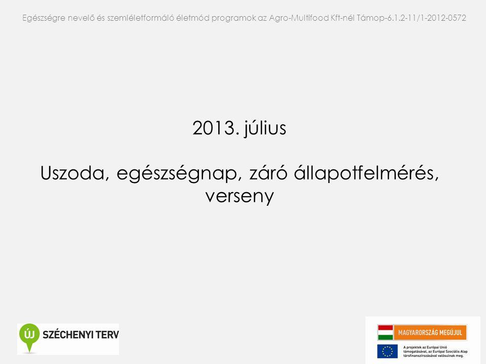 2013. július Uszoda, egészségnap, záró állapotfelmérés, verseny Egészségre nevelő és szemléletformáló életmód programok az Agro-Multifood Kft-nél Támo