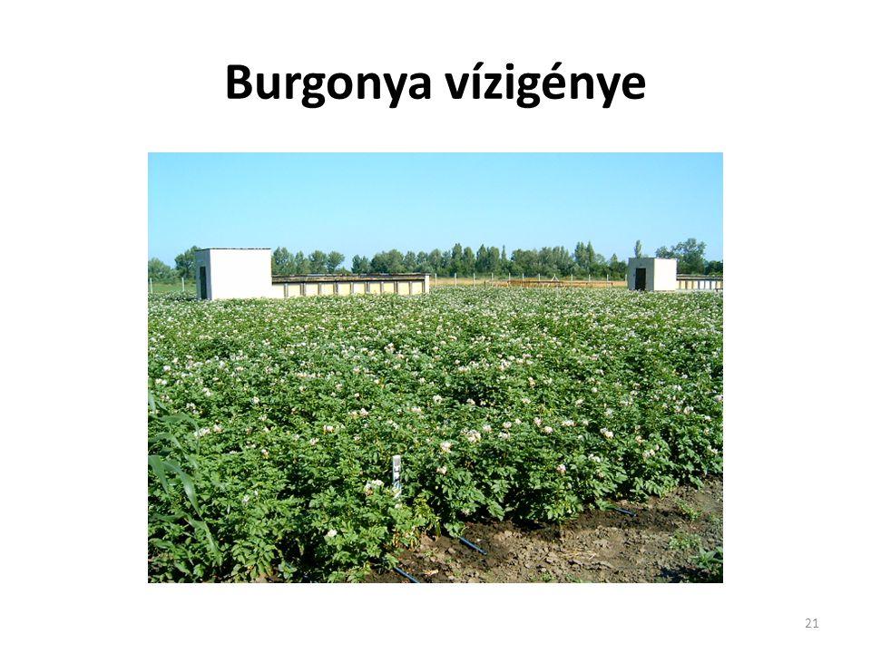 21 Burgonya vízigénye