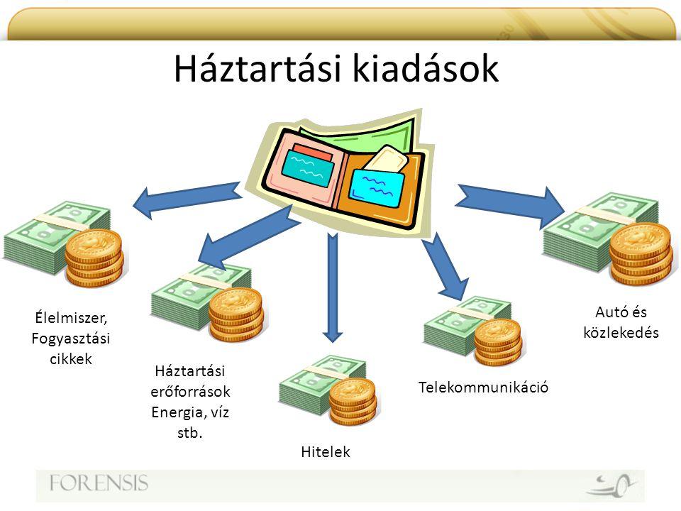 Háztartási kiadások Élelmiszer, Fogyasztási cikkek Háztartási erőforrások Energia, víz stb. Autó és közlekedés Telekommunikáció Hitelek