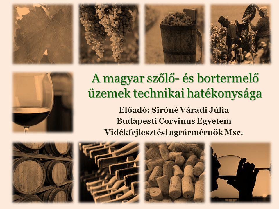 A magyar szőlő- és bortermelő üzemek technikai hatékonysága Előadó: Siróné Váradi Júlia Budapesti Corvinus Egyetem Vidékfejlesztési agrármérnök Msc.