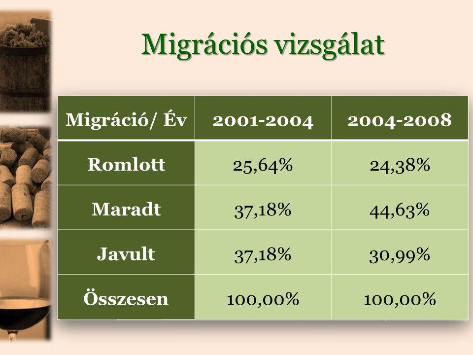 Migrációs vizsgálat