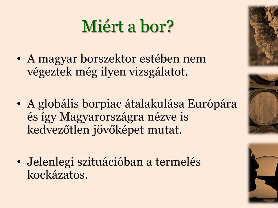 Miért a bor.• A magyar borszektor estében nem végeztek még ilyen vizsgálatot.