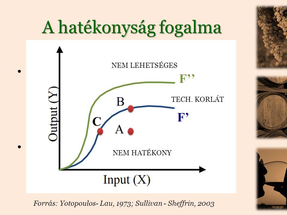 A hatékonyság fogalma • gazdasági hatékonyság: erőforrások használatával maximalizálják a javak és szolgáltatások termelését 1.allokatív hatékonyság 2.technikai hatékonyság • input-orientált és output-orientált kontextus Forrás: Yotopoulos- Lau, 1973; Sullivan - Sheffrin, 2003 NEM HATÉKONY NEM LEHETSÉGES TECH.