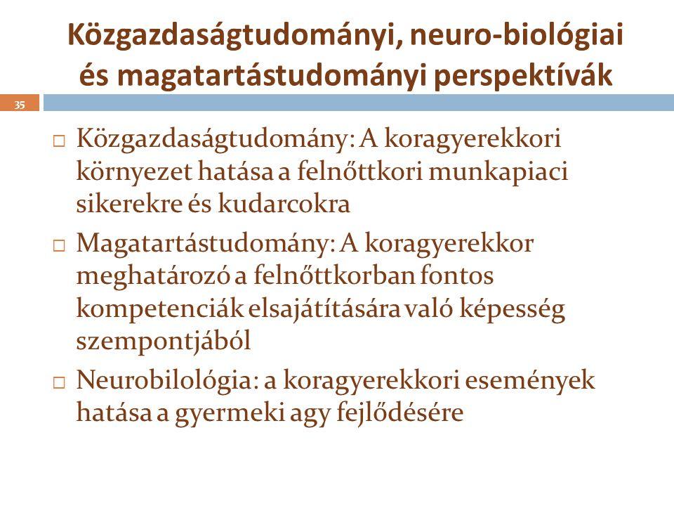 Közgazdaságtudományi, neuro-biológiai és magatartástudományi perspektívák  Közgazdaságtudomány: A koragyerekkori környezet hatása a felnőttkori munka