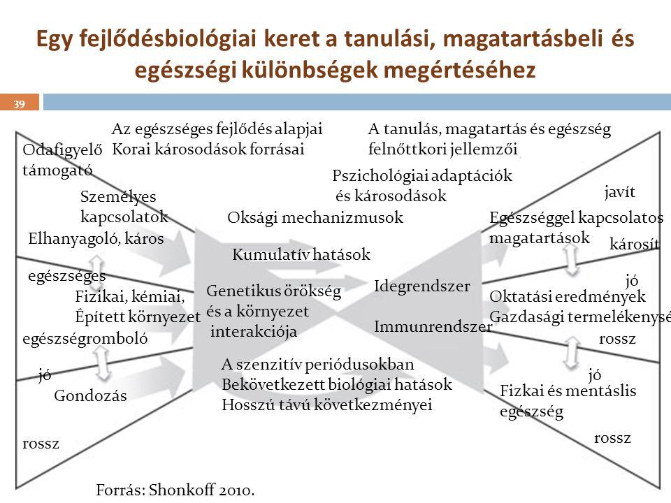 Egy fejlődésbiológiai keret a tanulási, magatartásbeli és egészségi különbségek megértéséhez 39 jó rossz Gondozás Fizikai, kémiai, Épített környezet e