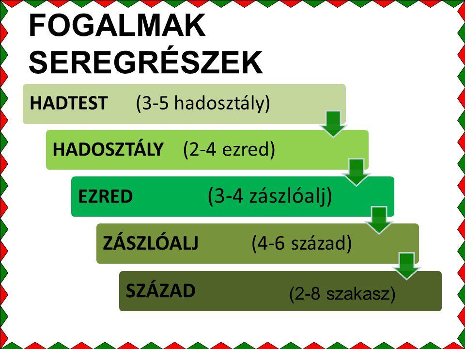 FOGALMAK SEREGRÉSZEK HADTEST (3-5 hadosztály) HADOSZTÁLY (2-4 ezred) EZRED (3-4 zászlóalj) ZÁSZLÓALJ (4-6 század)SZÁZAD (2-8 szakasz)