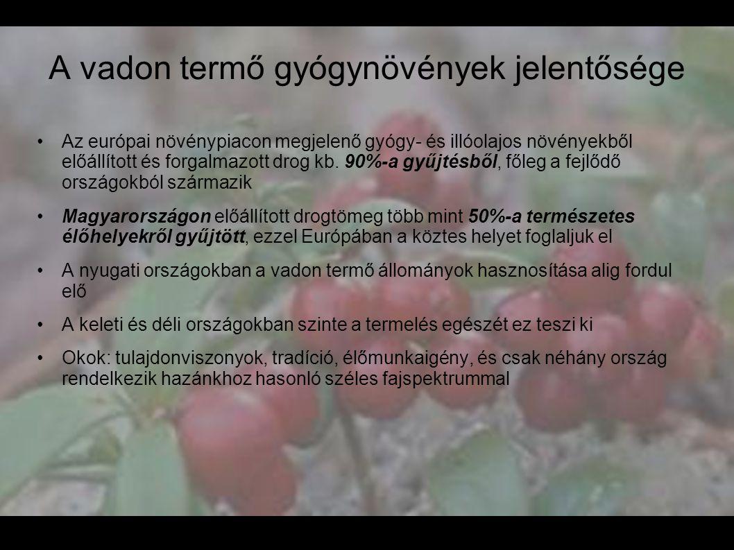 A vadon termő gyógynövények jelentősége •Az európai növénypiacon megjelenő gyógy- és illóolajos növényekből előállított és forgalmazott drog kb. 90%-a