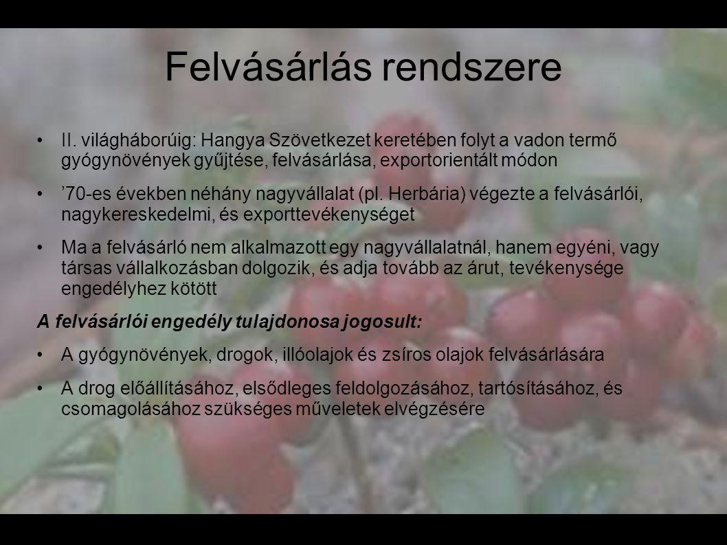 Felvásárlás rendszere •II. világháborúig: Hangya Szövetkezet keretében folyt a vadon termő gyógynövények gyűjtése, felvásárlása, exportorientált módon