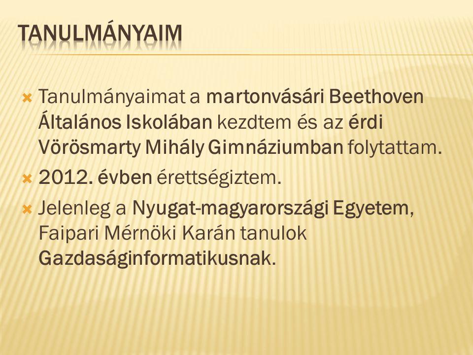  Tanulmányaimat a martonvásári Beethoven Általános Iskolában kezdtem és az érdi Vörösmarty Mihály Gimnáziumban folytattam.  2012. évben érettségizte