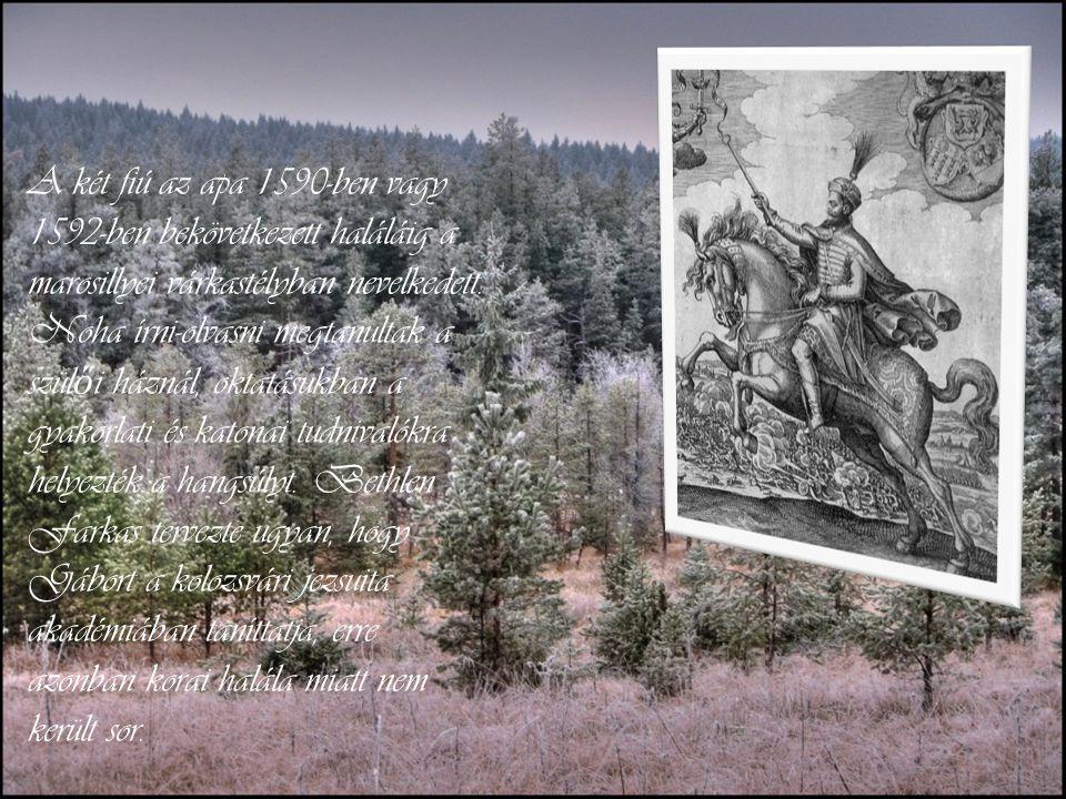 A két fiú az apa 1590-ben vagy 1592-ben bekövetkezett haláláig a marosillyei várkastélyban nevelkedett.
