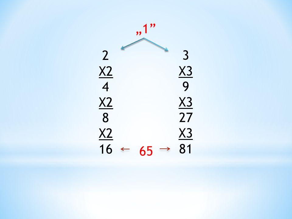 """3 X3 9 X3 27 X3 81 2 X2 4 X2 8 X2 16 """"1"""" 65"""