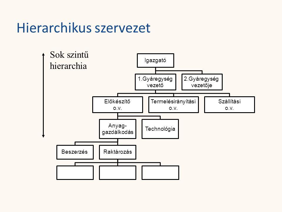 Hierarchikus szervezet Sok szintű hierarchia Igazgató 1.Gyáregység vezető 2.Gyáregység vezetője Előkészítő o.v. Termelésirányítási o.v. Szállítási o.v