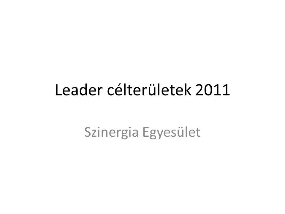 Leader célterületek 2011 Szinergia Egyesület