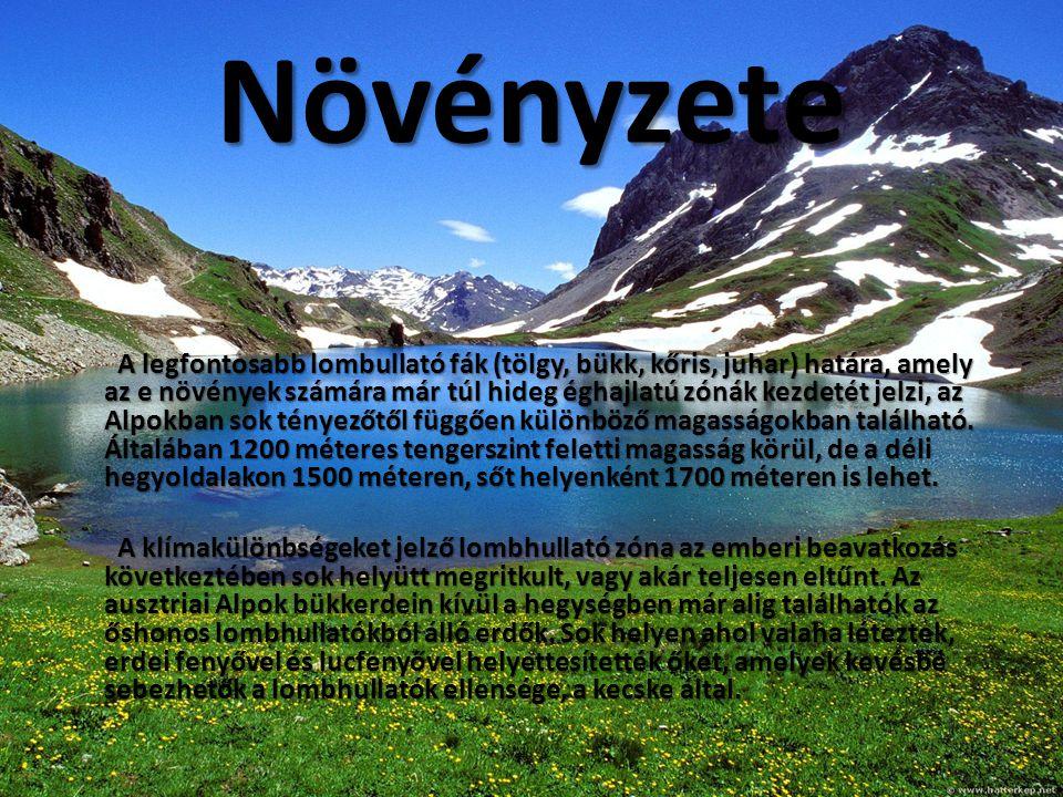 Növényzete A legfontosabb lombullató fák (tölgy, bükk, kőris, juhar) határa, amely az e növények számára már túl hideg éghajlatú zónák kezdetét jelzi, az Alpokban sok tényezőtől függően különböző magasságokban található.