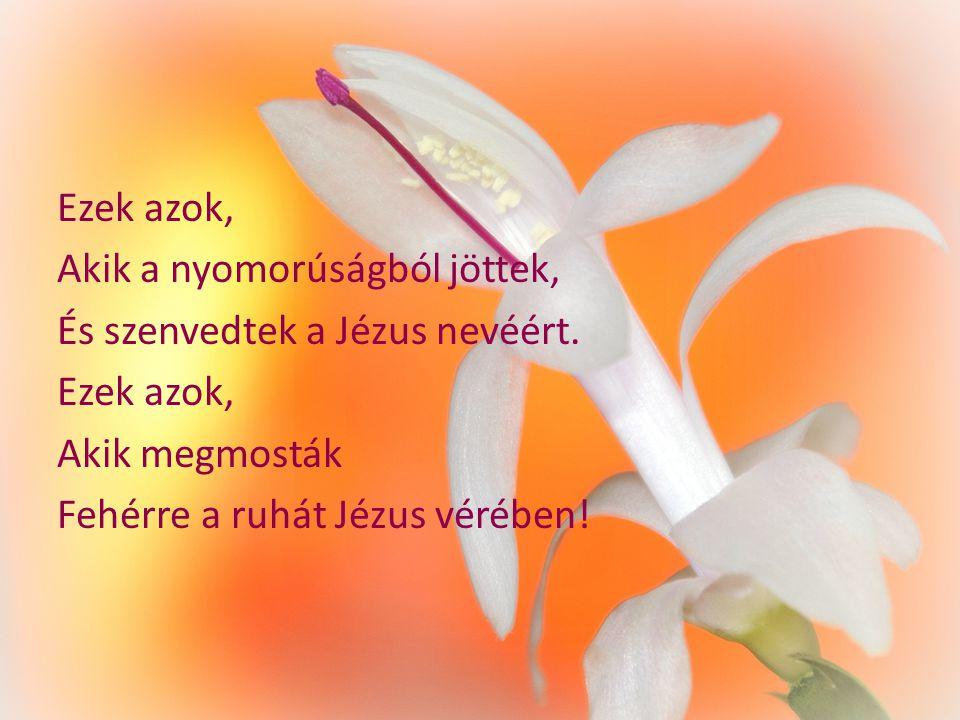 Ezek azok, Akik a nyomorúságból jöttek, És szenvedtek a Jézus nevéért. Ezek azok, Akik megmosták Fehérre a ruhát Jézus vérében!