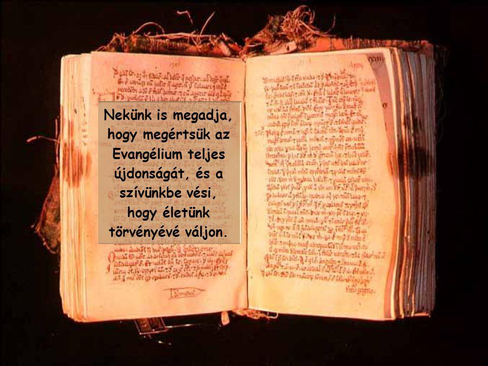 Nekünk is megadja, hogy megértsük az Evangélium teljes újdonságát, és a szívünkbe vési, hogy életünk törvényévé váljon.