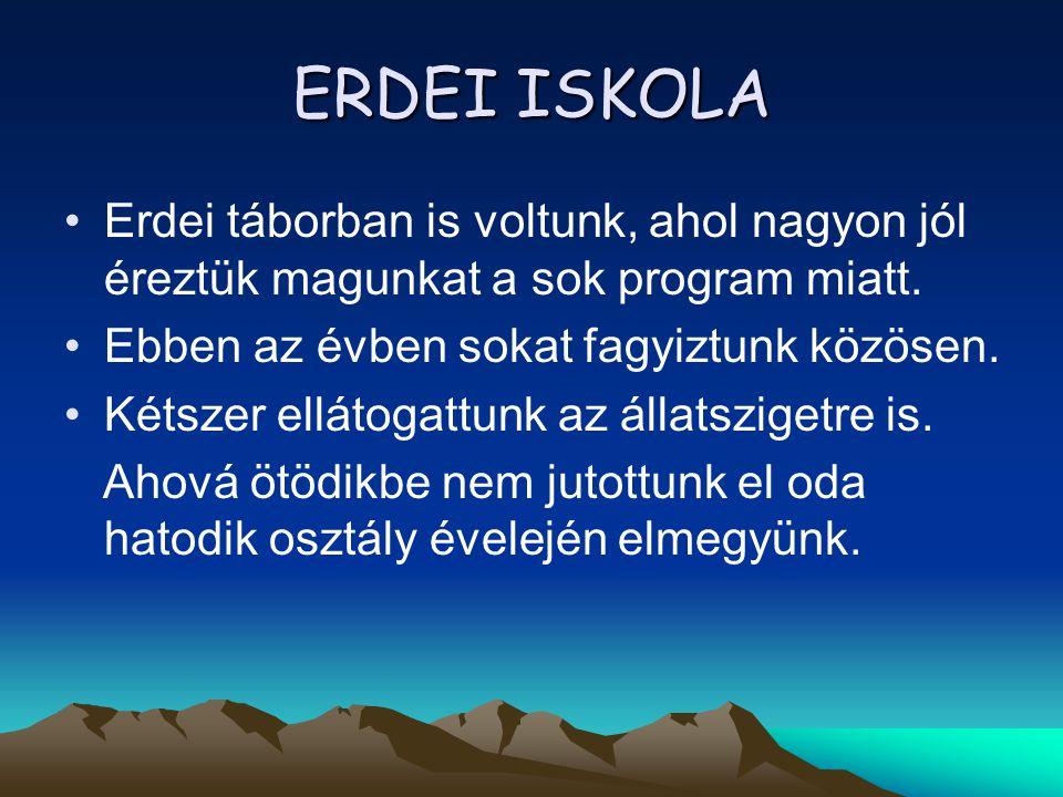 ERDEI ISKOLA •Erdei táborban is voltunk, ahol nagyon jól éreztük magunkat a sok program miatt. •Ebben az évben sokat fagyiztunk közösen. •Kétszer ellá